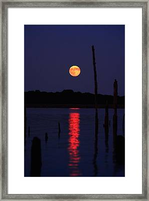 Blue Moon Framed Print by Raymond Salani III