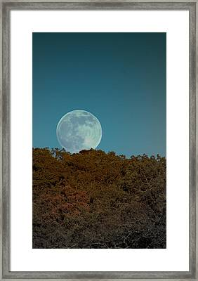 Blue Moon Risign Framed Print
