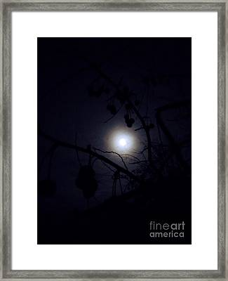 Blue Moons Framed Print by The Stone Age