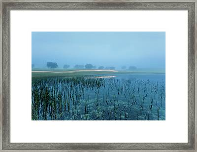 Framed Print featuring the photograph Blue Morning Flash by Jorge Maia