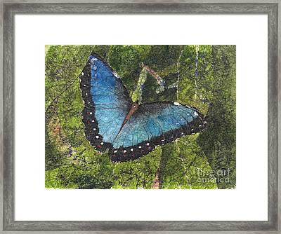 Blue Morpho Butterfly Batik Framed Print
