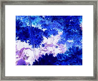 Blue Mums And Water Framed Print