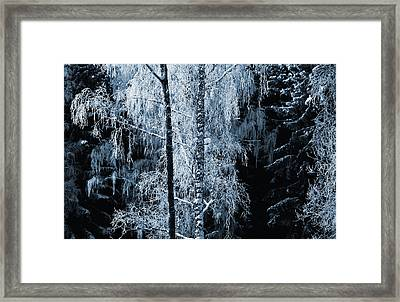 Blue Nature Winter Scenery Framed Print
