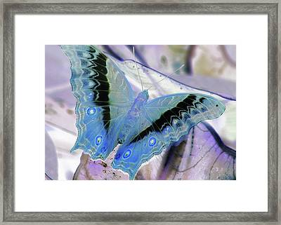 Blue Negative Framed Print by JAMART Photography