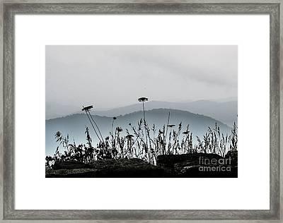 Blue On Blue 2 Framed Print by Julie Lueders