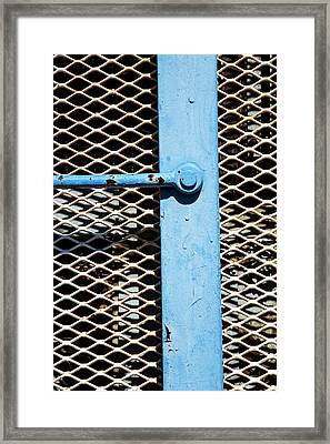 Framed Print featuring the photograph Blue On White by Karol Livote