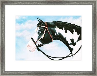 Blue Overo Sky Framed Print by Louise Green