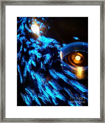Blue Owl Framed Print by Christopher Wilson