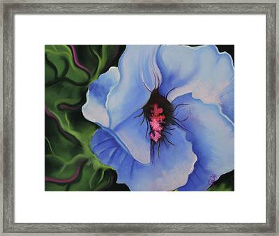 Blue Petals Framed Print by Candice Wright