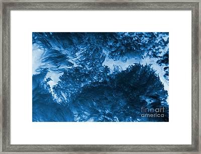 Blue Plants Framed Print by Kathleen Struckle