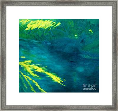 Blue Pool Off Ulaino Road Framed Print by Fay Biegun - Printscapes