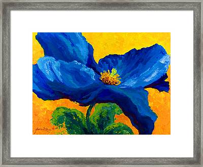 Blue Poppy Framed Print by Marion Rose