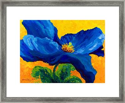 Blue Poppy Framed Print by Marion Rose