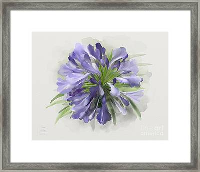 Blue Purple Flowers Framed Print by Ivana Westin