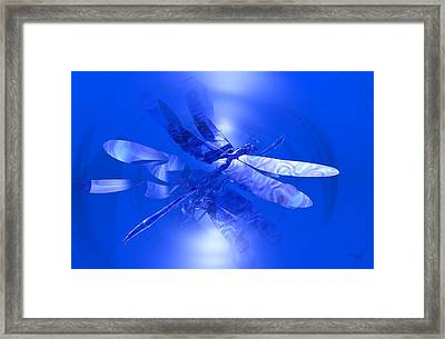 Blue Reflections Dragonfly Framed Print