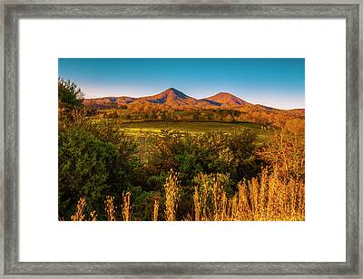 Framed Print featuring the photograph Blue Ridge Fall by Steven Ainsworth