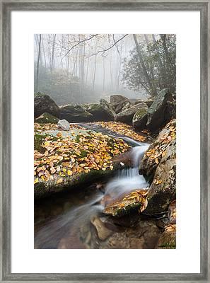 Blue Ridge Mountain Autumn Cascade Framed Print by Mark VanDyke