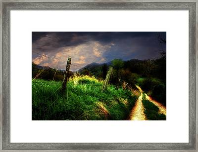 Framed Print featuring the photograph Blue Ridge Mountain Country Road by Gray  Artus