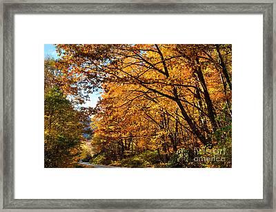 Blue Ridge Parkway Americas Favorite Drive Framed Print by Dan Carmichael