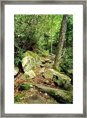 Framed Print featuring the photograph Blue Ridge Parkway Hiking Trail by Meta Gatschenberger