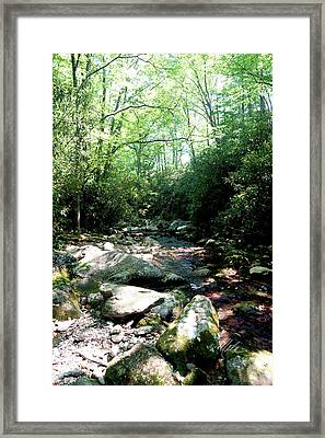 Framed Print featuring the photograph Blue Ridge Parkway Stream by Meta Gatschenberger