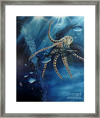 Blue Ring Octopus Framed Print