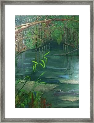 Blue Run Trail Framed Print by Cindy Harvell