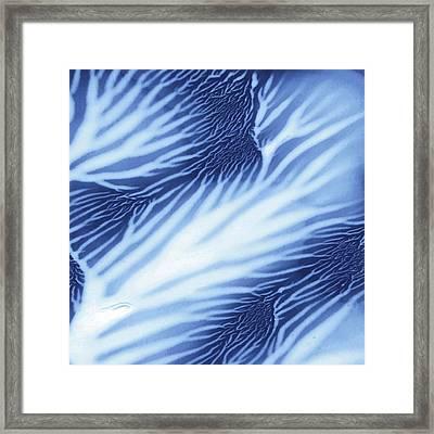Blue Sea Serenity Square Framed Print