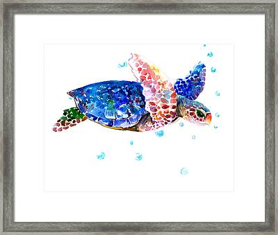 Blue Sea Turtle Framed Print
