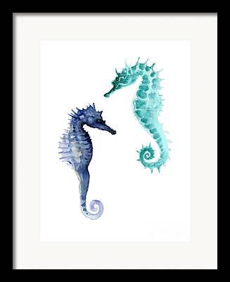 Seahorse Framed Prints