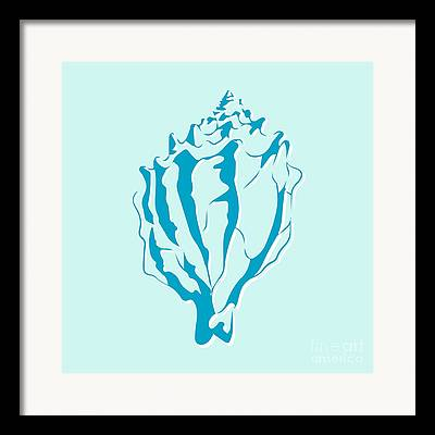Aquatic Drawings Framed Prints