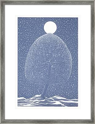 Blue Shadow Tree Framed Print