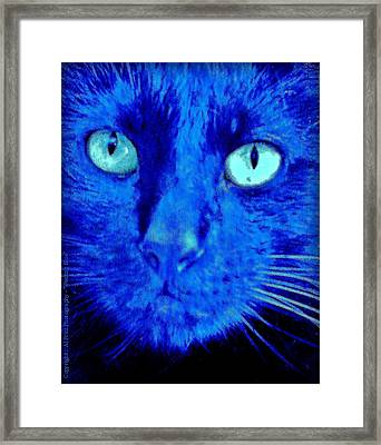 Framed Print featuring the photograph  Blue Shadows by Al Fritz