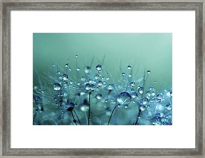 Blue Shower Framed Print