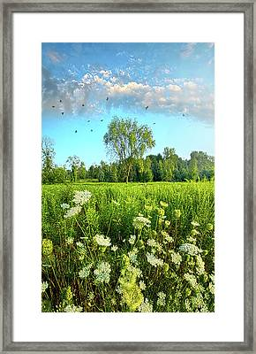 Blue Skies Smilin' At Me Framed Print