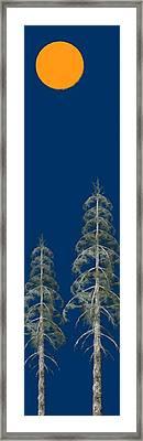 Blue Sky Framed Print by David Dehner