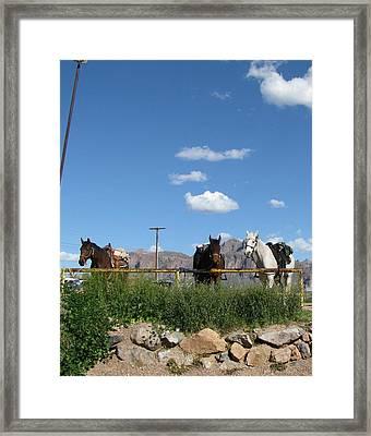 Blue Sky In Arizona Framed Print by Gloria Byler