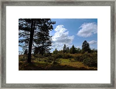 Framed Print featuring the photograph Blue Sky by Joanne Coyle