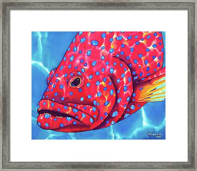 Blue Spotted Red Coral Grouper Fish Framed Print