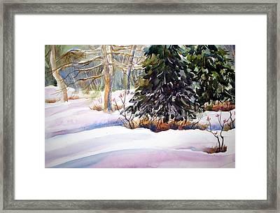 Blue Spruce Framed Print by Chito Gonzaga