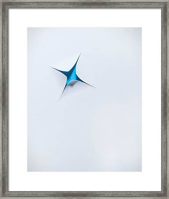 Blue Star On White Framed Print by Scott Norris