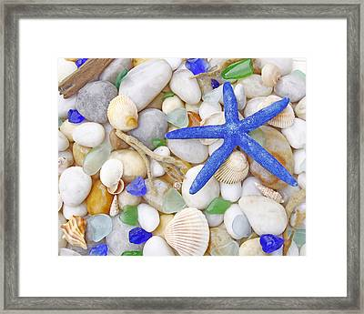 Blue Starfish Framed Print by Kelly S Andrews