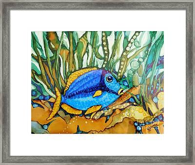 Blue Tang Framed Print