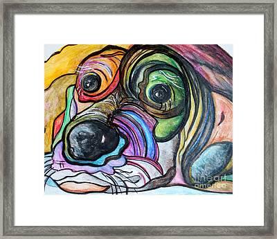 Blue Tick Hound Framed Print by Eloise Schneider