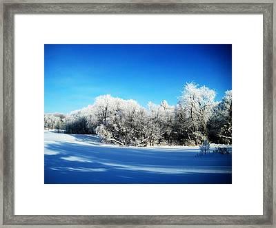 Blue Framed Print by Toni Jackson