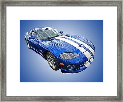 Blue Viper Framed Print by Gill Billington