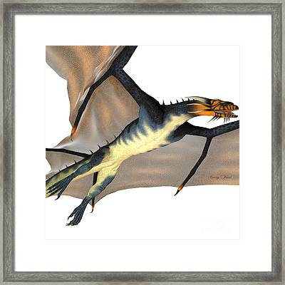 Blue Wasp Dragon Reign Framed Print by Corey Ford