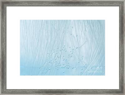 Blue Water Air Bubbles Closeup Framed Print by Arletta Cwalina
