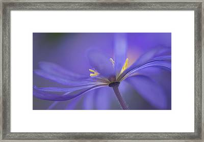 Blue Waves Framed Print by Penny Myles