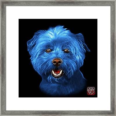 Blue West Highland Terrier Mix - 8674 - Bb Framed Print